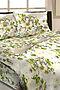 Комплект постельного белья #103242. Вид 1.
