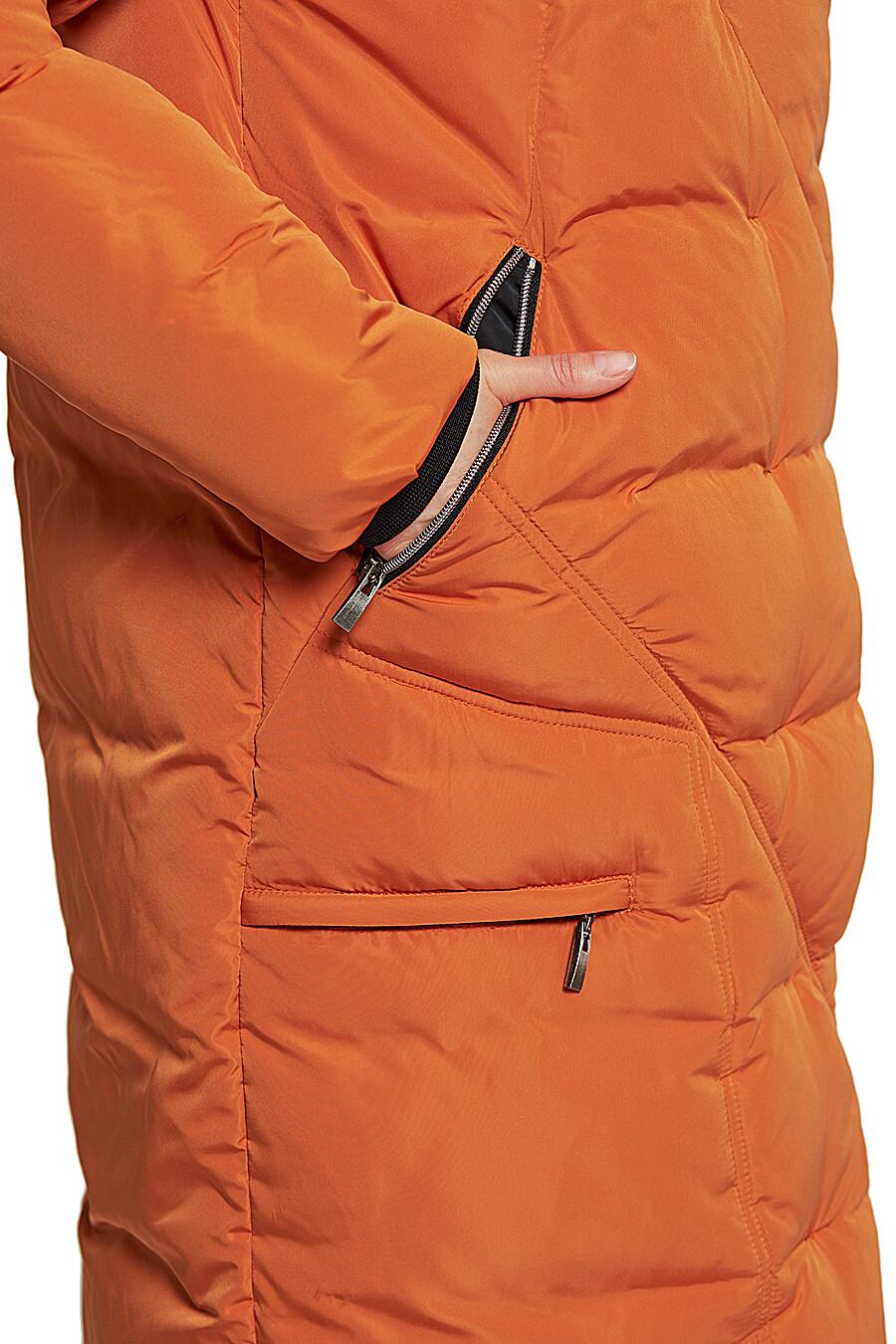 Пальто DIMMA (236818), купить в Moyo.moda