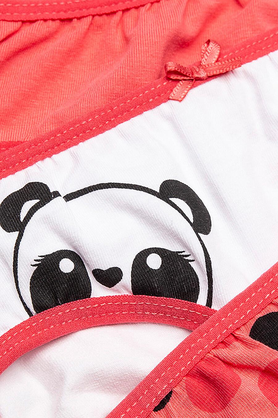 Трусы 3 шт. для девочек COCCODRILLO 247642 купить оптом от производителя. Совместная покупка детской одежды в OptMoyo