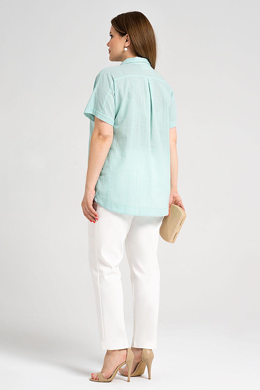 Блуза для женщин PANDA 683235 купить оптом от производителя. Совместная покупка женской одежды в OptMoyo